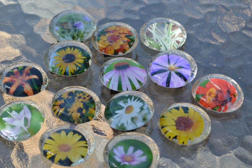 Nature Magnets You Can Make From And Flower Photos