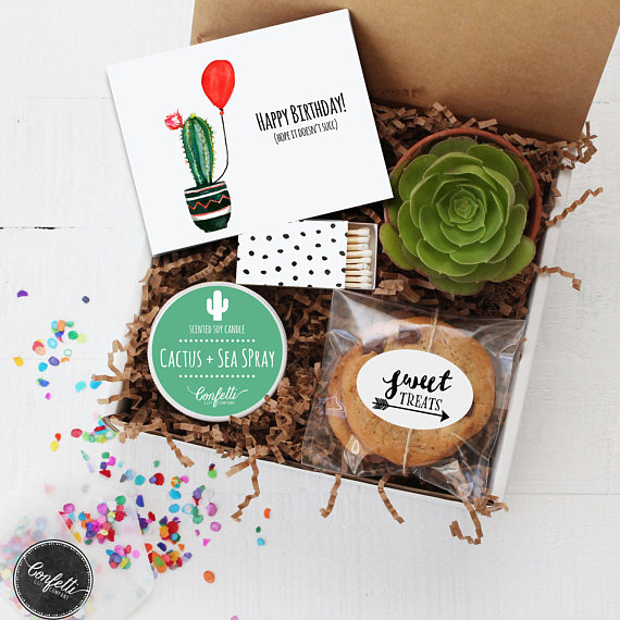 Christmas Succulent Gift Ideas.5 Amazing Succulent Gift Ideas For The Gardener In Your Life