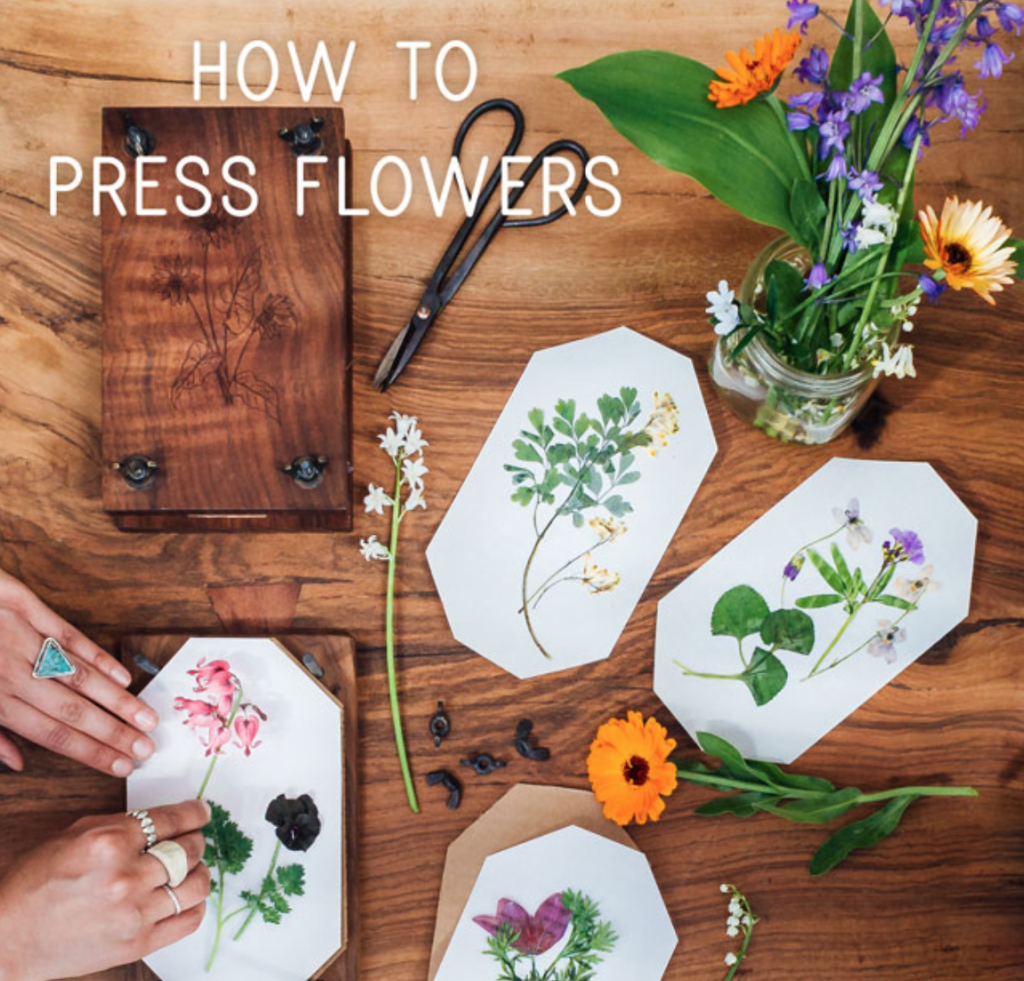 DIY_Gifts_press_flowers